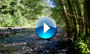Naches Trail Slideshow